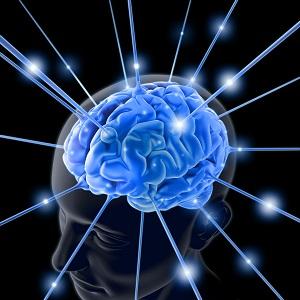 Intellektuelle Hochbegabung in der Psychotherapie am 09.10.21 von 10:00 - 14:00 Uhr